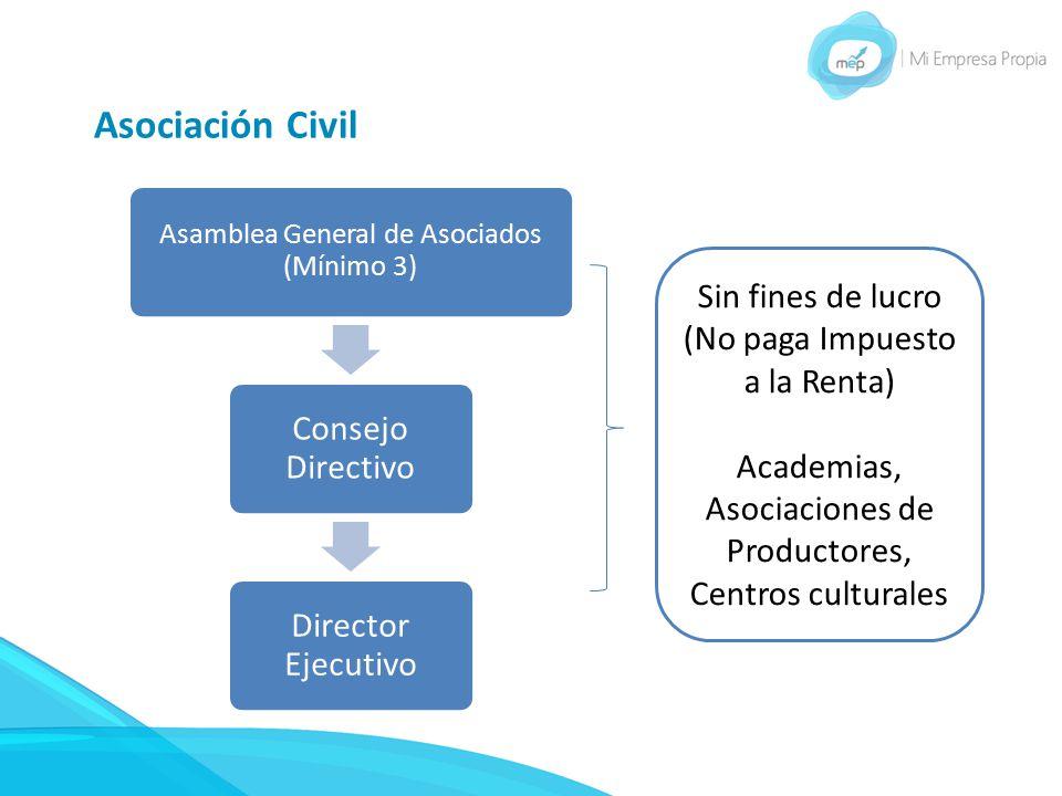 Asociación Civil Consejo Directivo Director Ejecutivo