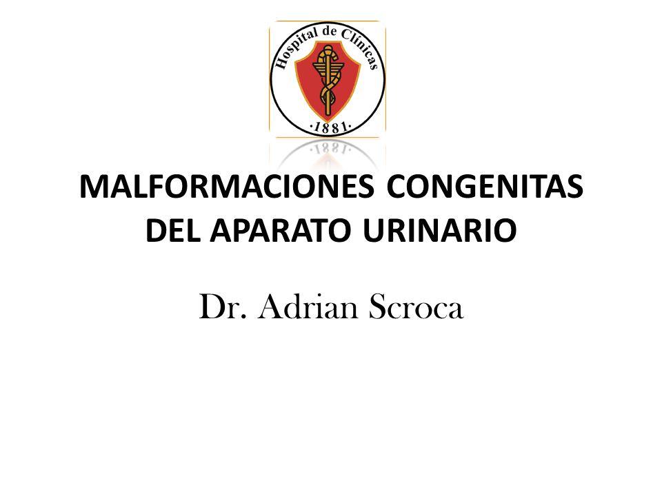MALFORMACIONES CONGENITAS DEL APARATO URINARIO