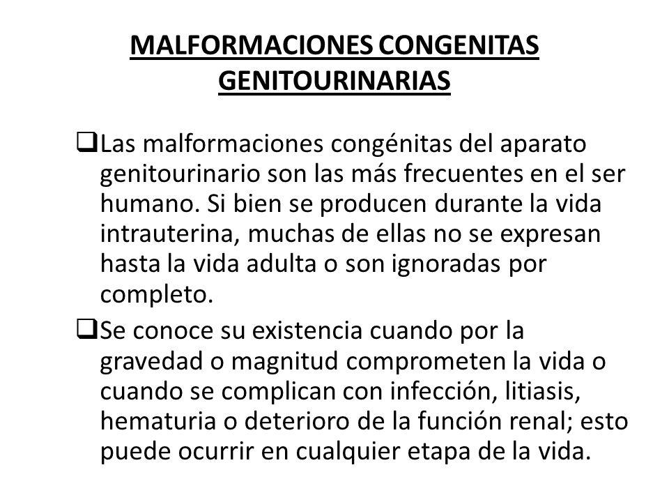 MALFORMACIONES CONGENITAS GENITOURINARIAS