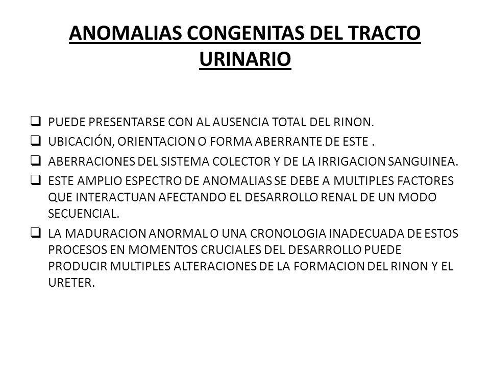 ANOMALIAS CONGENITAS DEL TRACTO URINARIO