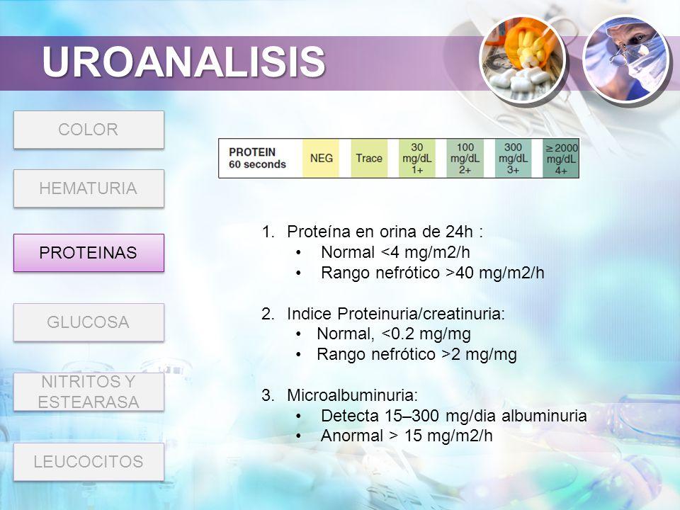 UROANALISIS COLOR HEMATURIA Proteína en orina de 24h :