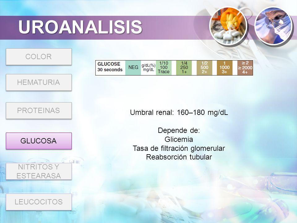 Tasa de filtración glomerular