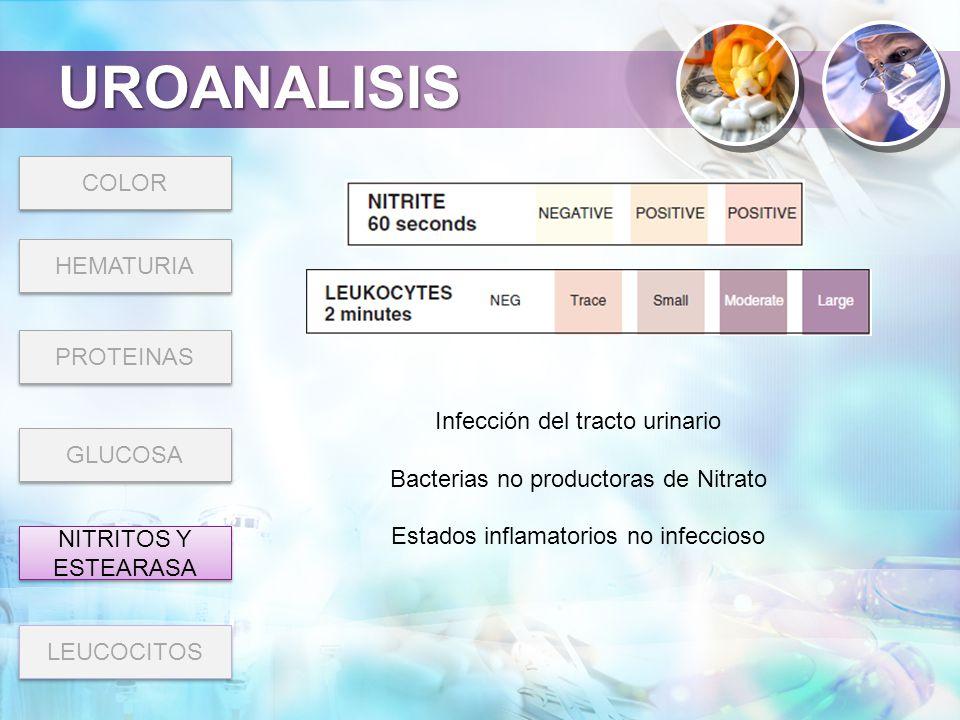 UROANALISIS COLOR HEMATURIA PROTEINAS Infección del tracto urinario