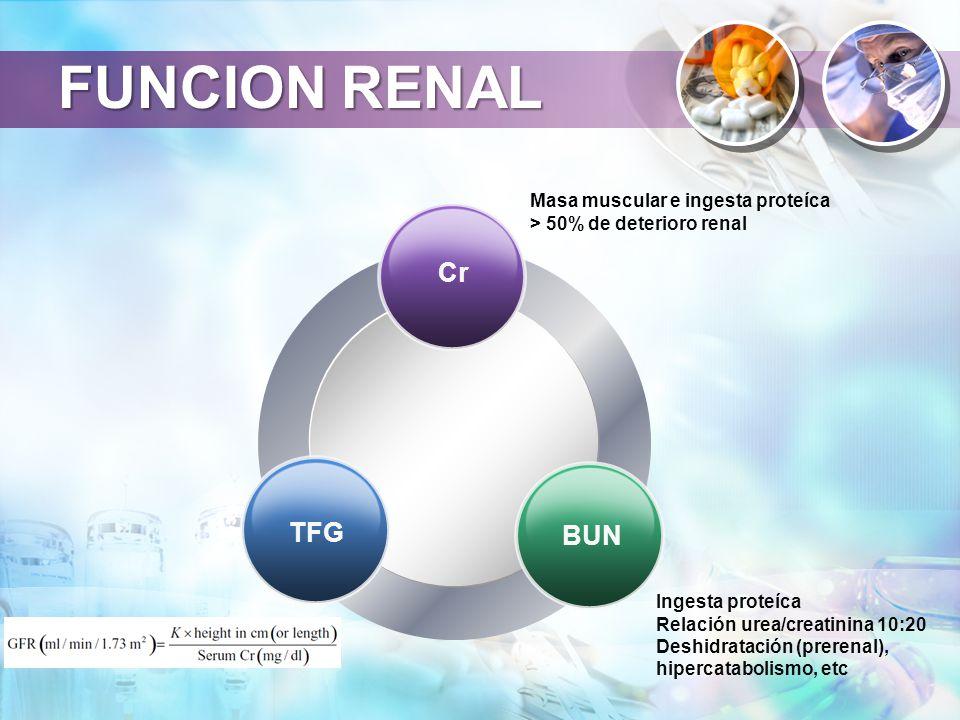 FUNCION RENAL Cr TFG BUN Masa muscular e ingesta proteíca