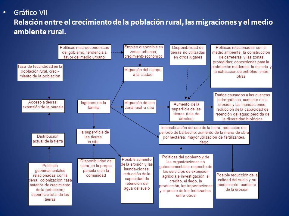 Gráfico VII Relación entre el crecimiento de la población rural, las migraciones y el medio ambiente rural.