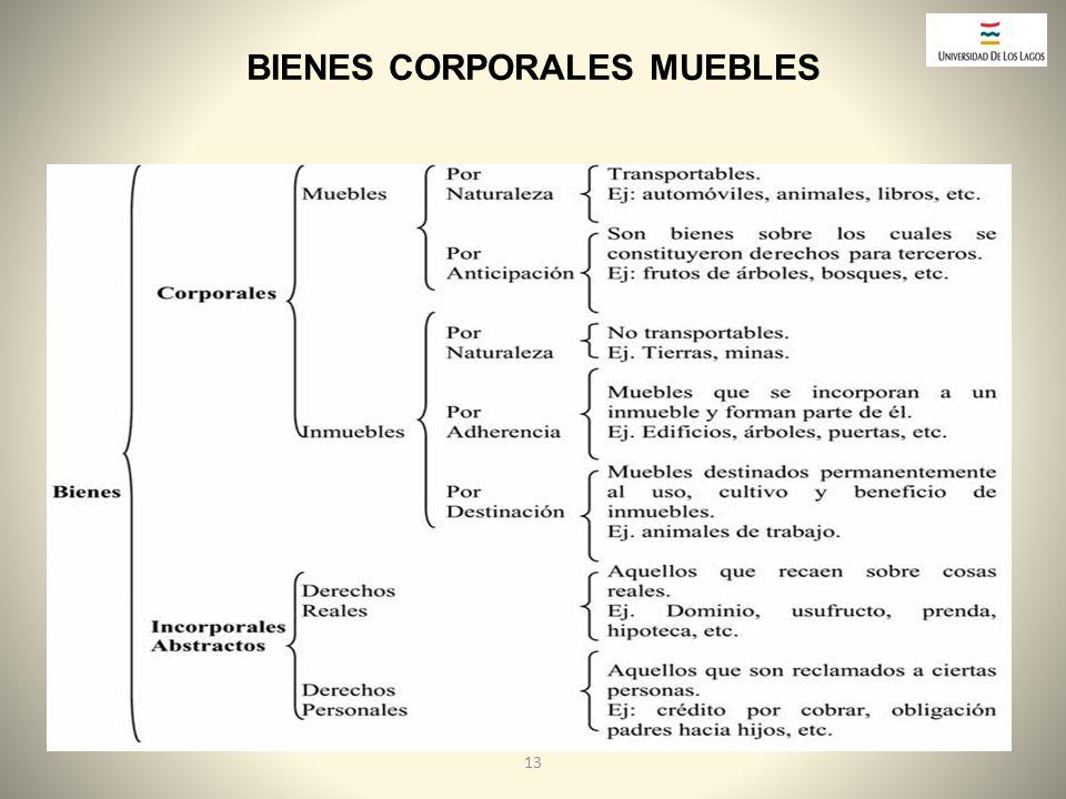 BIENES CORPORALES MUEBLES