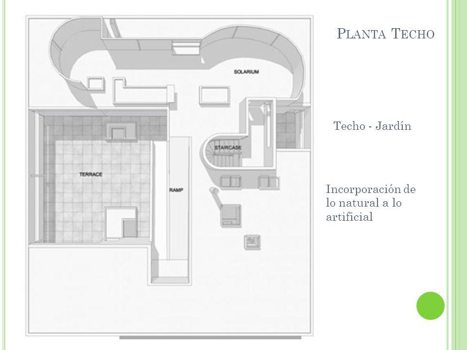 Planta Techo Techo - Jardín