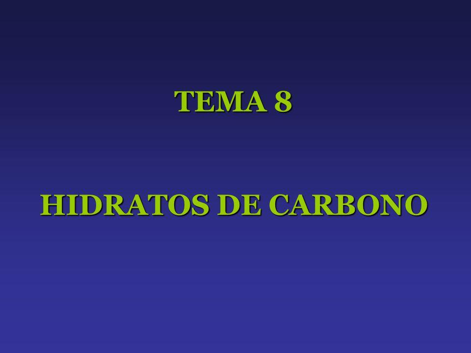 TEMA 8 HIDRATOS DE CARBONO