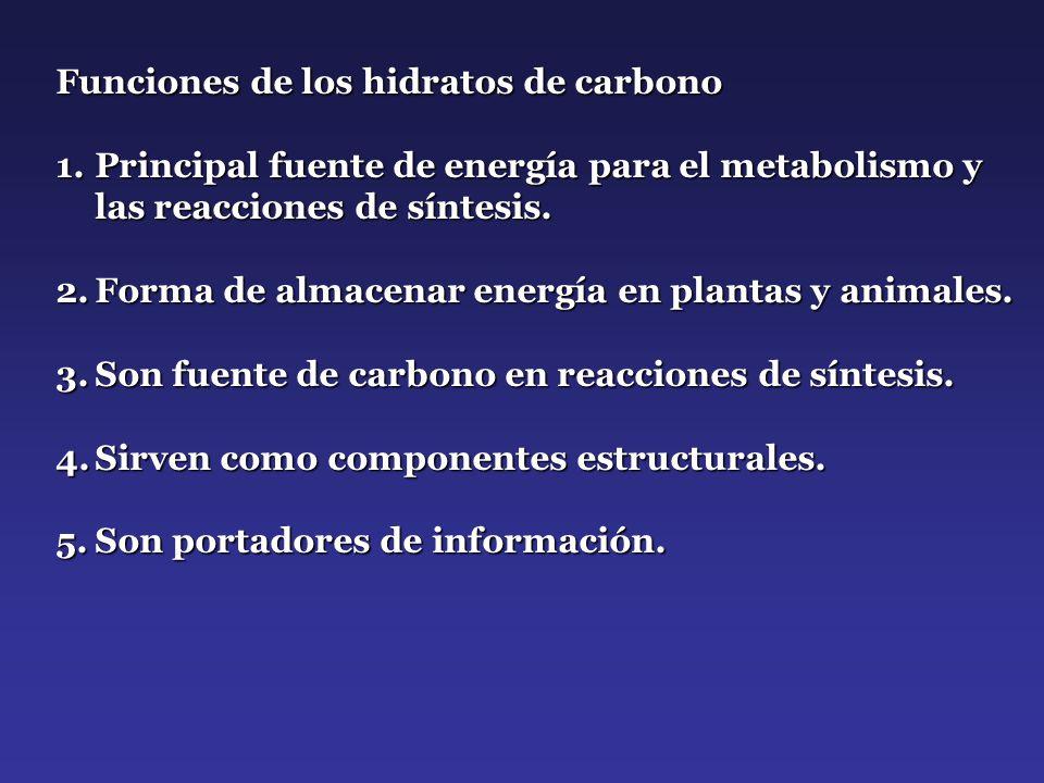 Funciones de los hidratos de carbono