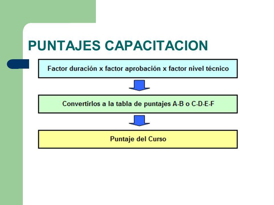 PUNTAJES CAPACITACION