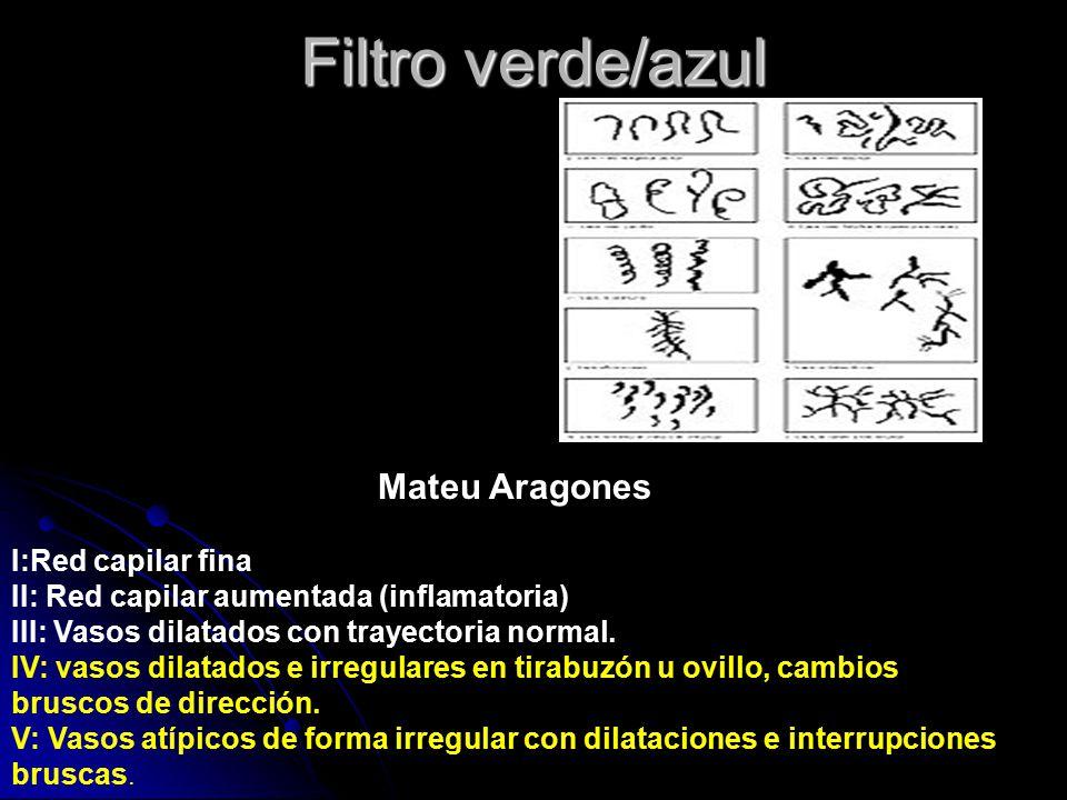 Filtro verde/azul Mateu Aragones I:Red capilar fina