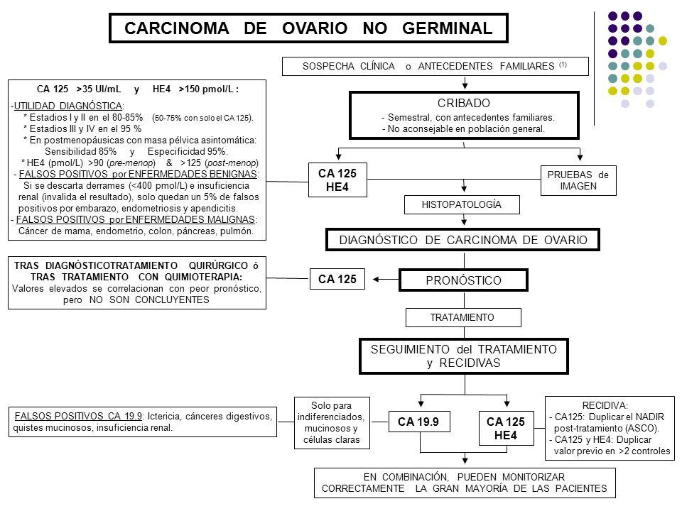 CARCINOMA DE OVARIO NO GERMINAL