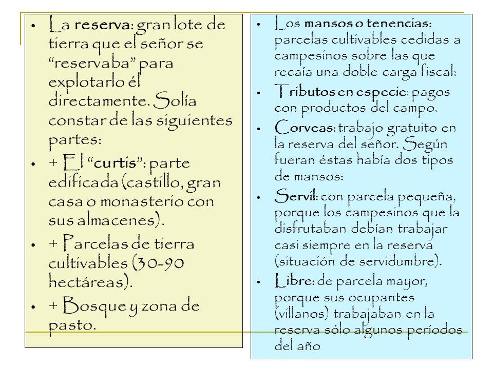 + Parcelas de tierra cultivables (30-90 hectáreas).
