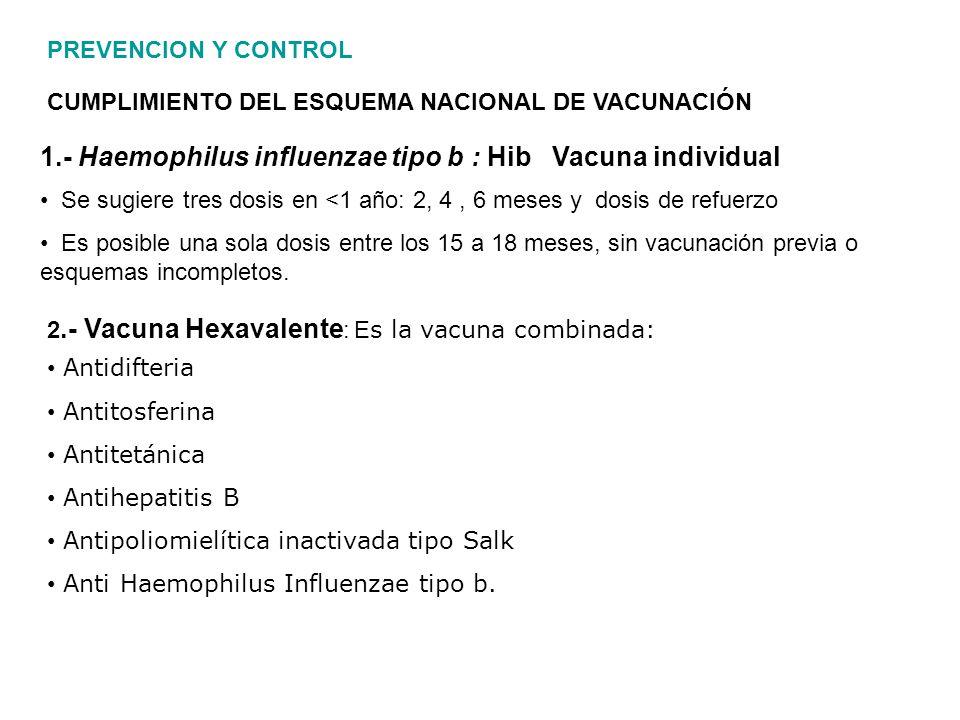 1.- Haemophilus influenzae tipo b : Hib Vacuna individual