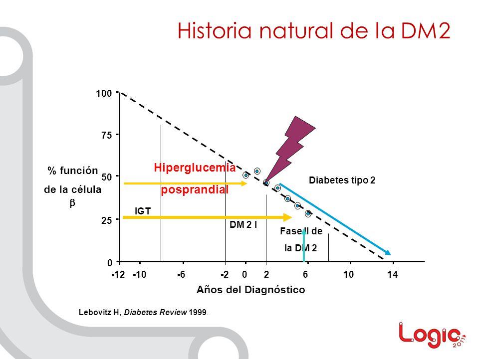 Historia natural de la DM2