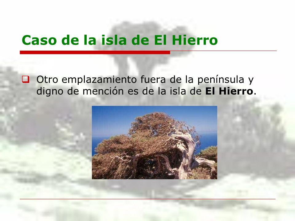Caso de la isla de El Hierro