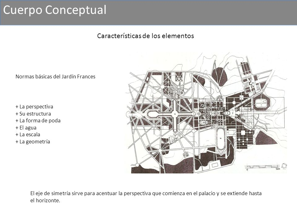 Cuerpo Conceptual Características de los elementos