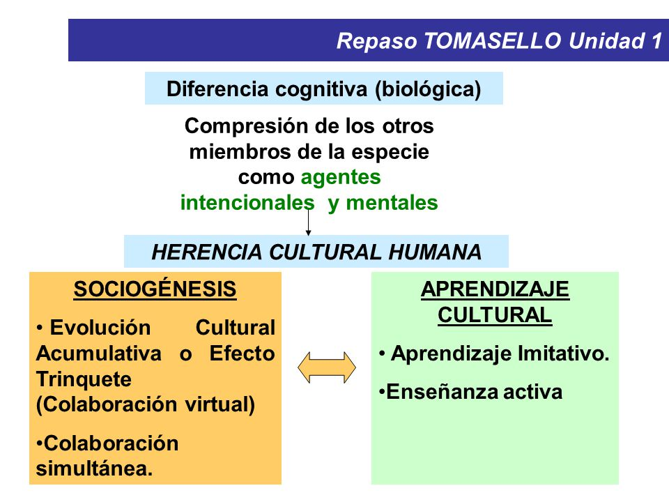 Diferencia cognitiva (biológica) HERENCIA CULTURAL HUMANA