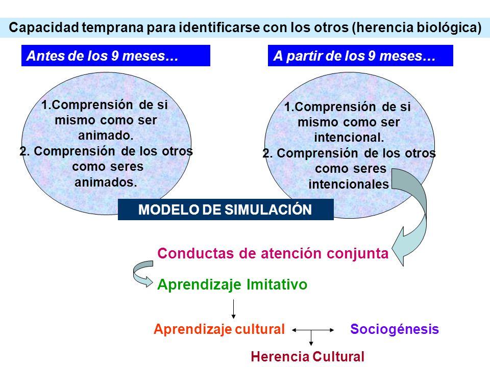 2. Comprensión de los otros 2. Comprensión de los otros