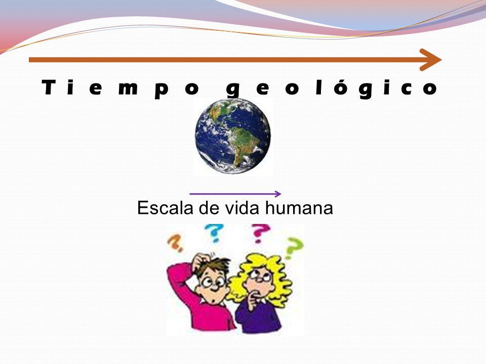 T i e m p o g e o l ó g i c o Escala de vida humana
