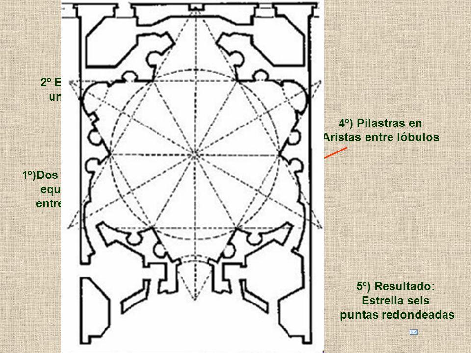 3º) Añadido de lóbulos Cóncavos y convexos 2º El cruce crea
