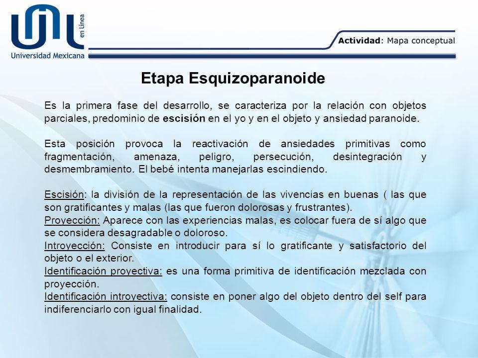 Etapa Esquizoparanoide