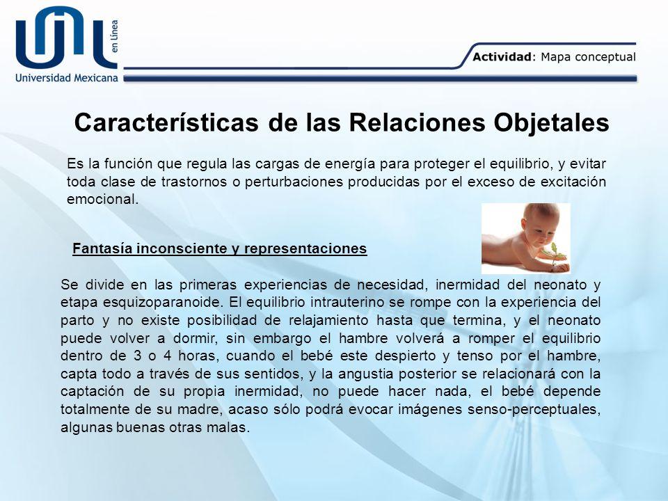 Características de las Relaciones Objetales