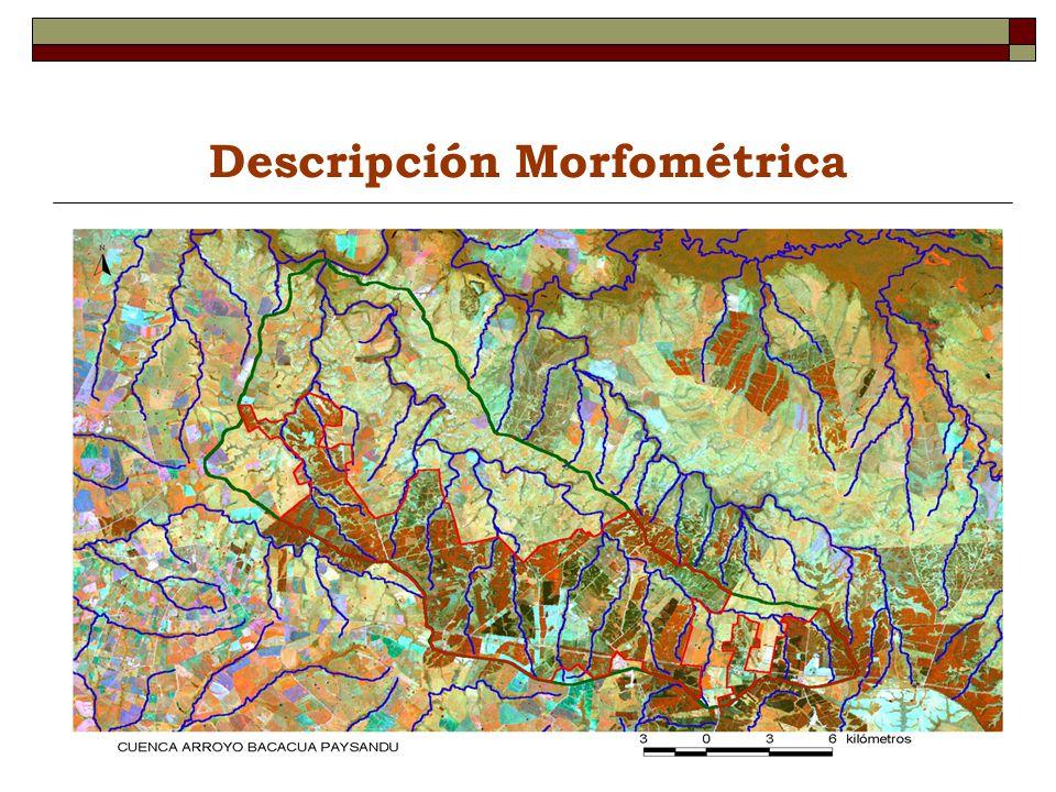 Descripción Morfométrica