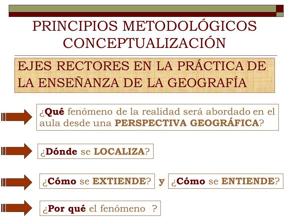PRINCIPIOS METODOLÓGICOS CONCEPTUALIZACIÓN