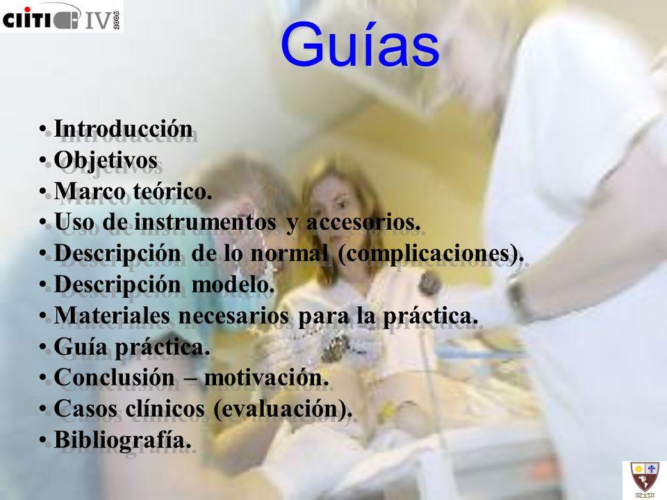 Guías Introducción Objetivos Marco teórico.
