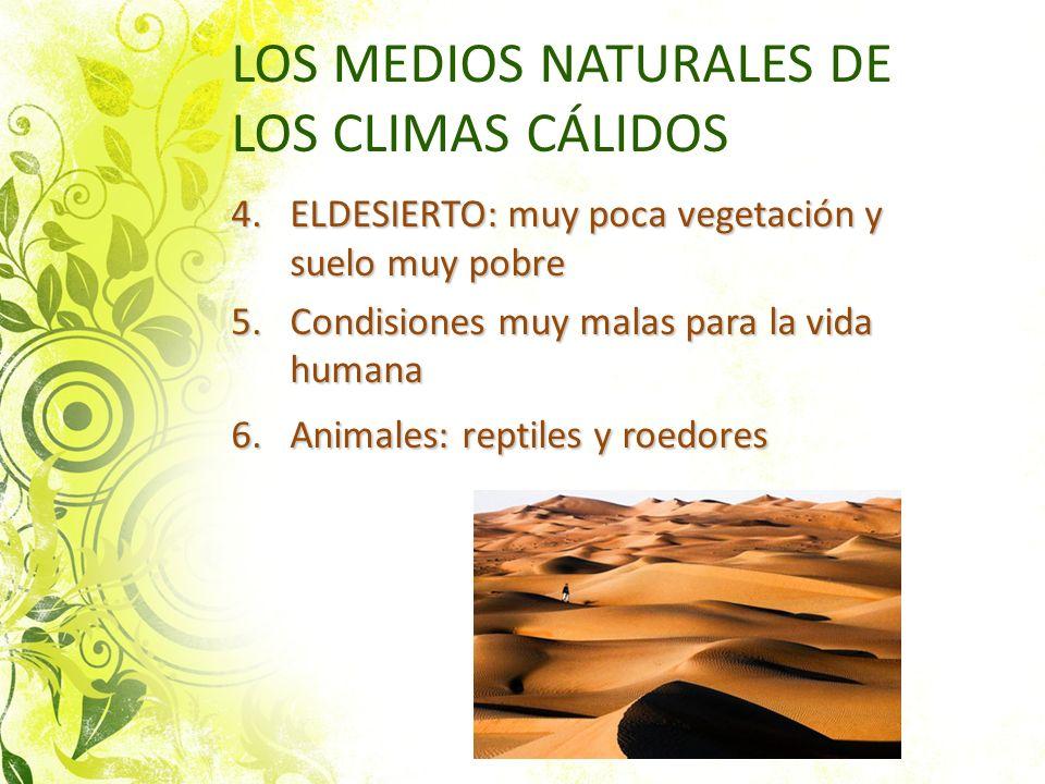 LOS MEDIOS NATURALES DE LOS CLIMAS CÁLIDOS