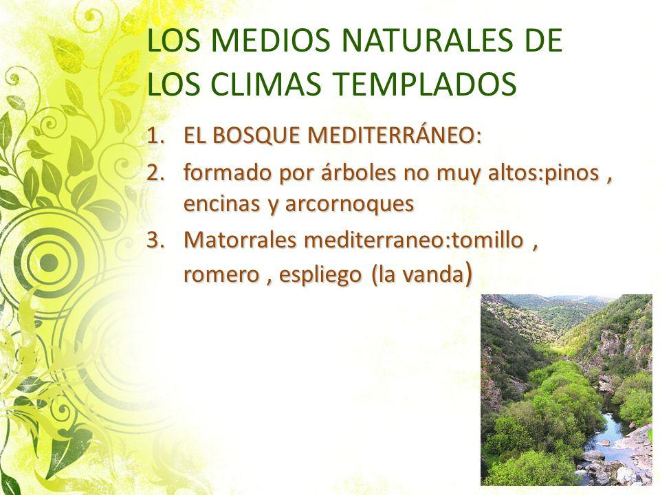 LOS MEDIOS NATURALES DE LOS CLIMAS TEMPLADOS