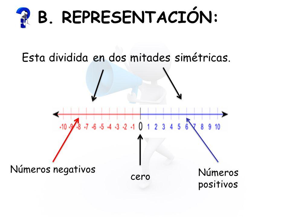 B. REPRESENTACIÓN: Esta dividida en dos mitades simétricas.