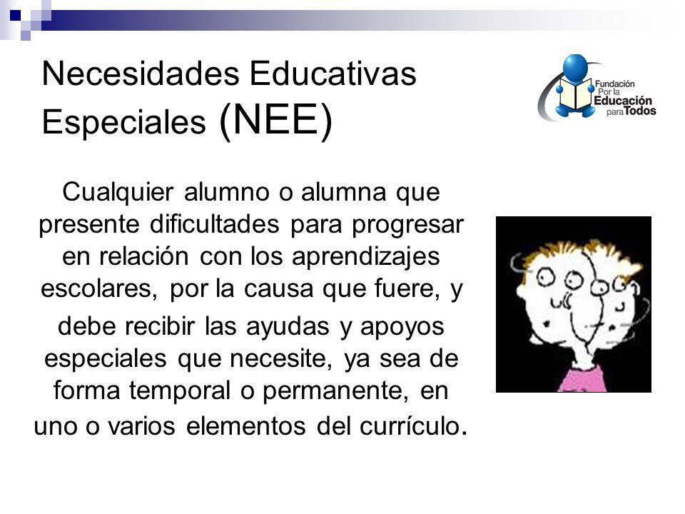 Necesidades Educativas Especiales (NEE)