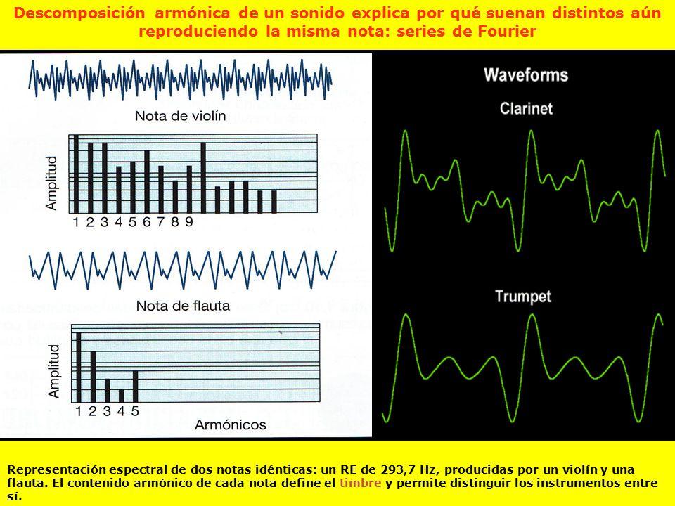 Descomposición armónica de un sonido explica por qué suenan distintos aún reproduciendo la misma nota: series de Fourier