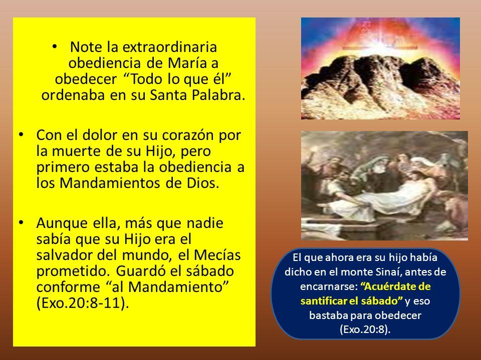 Note la extraordinaria obediencia de María a obedecer Todo lo que él ordenaba en su Santa Palabra.