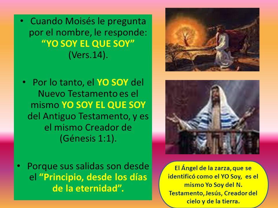 Cuando Moisés le pregunta por el nombre, le responde: YO SOY EL QUE SOY (Vers.14).