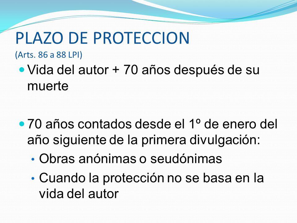 PLAZO DE PROTECCION (Arts. 86 a 88 LPI)