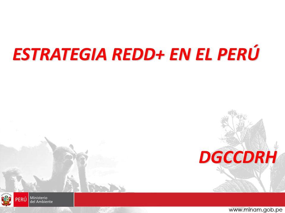 ESTRATEGIA REDD+ EN EL PERÚ