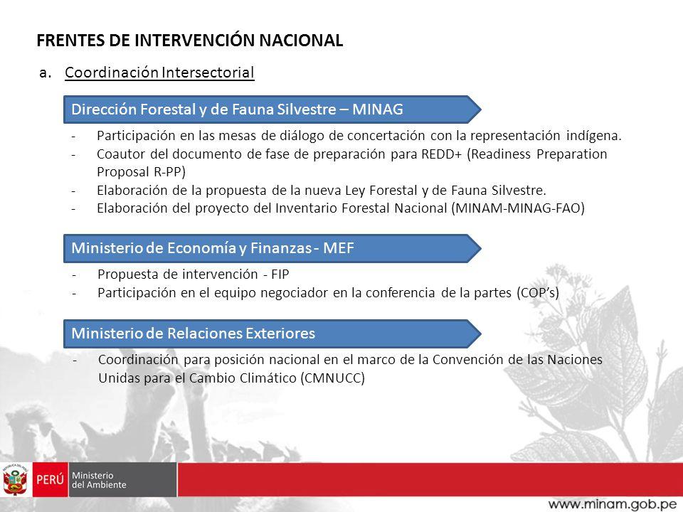 FRENTES DE INTERVENCIÓN NACIONAL