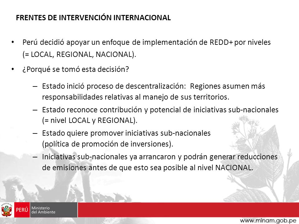 FRENTES DE INTERVENCIÓN INTERNACIONAL