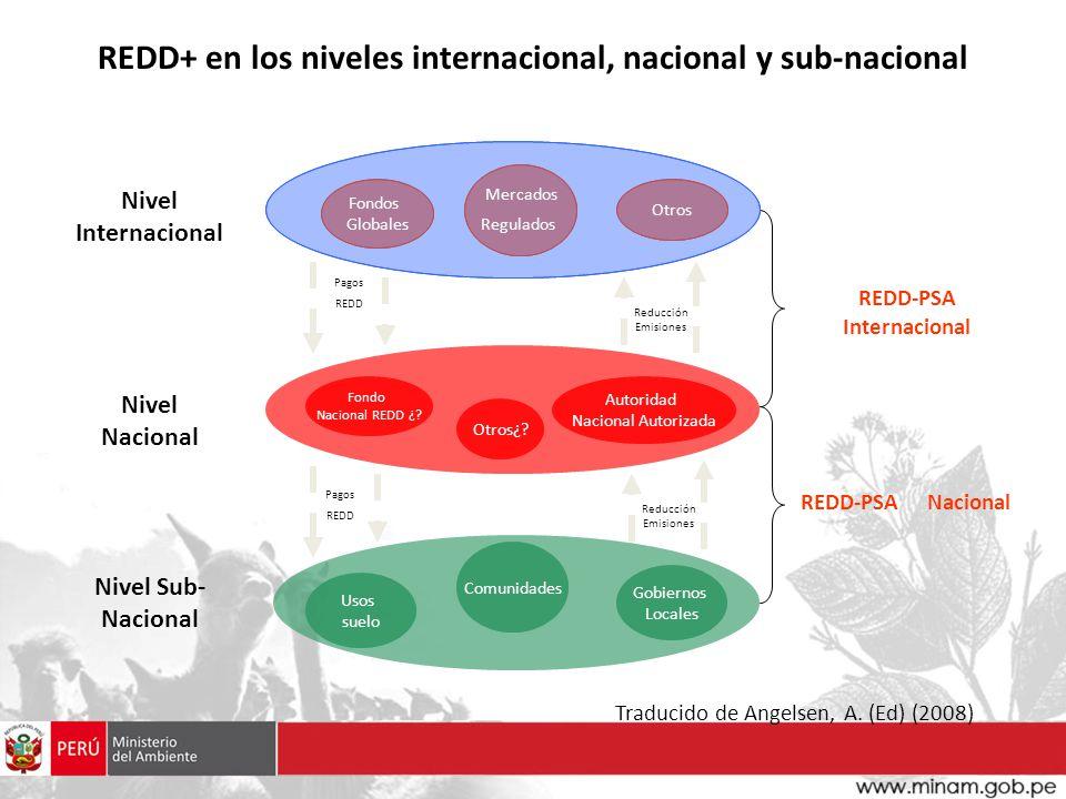 REDD+ en los niveles internacional, nacional y sub-nacional