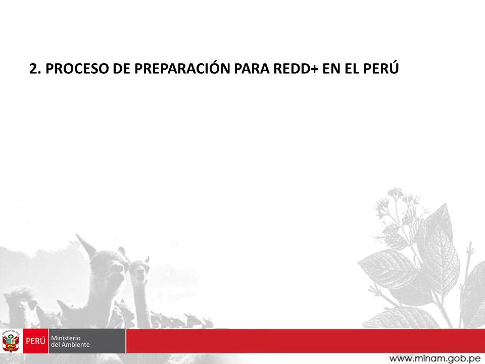 2. PROCESO DE PREPARACIÓN PARA REDD+ EN EL PERÚ
