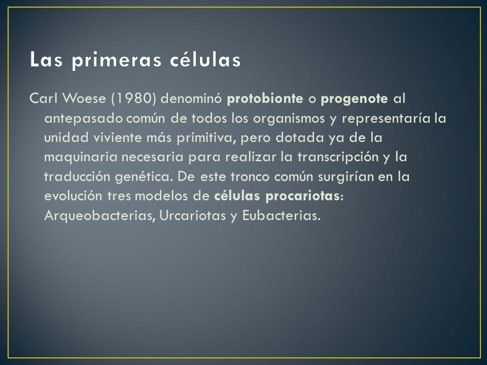 Las primeras células