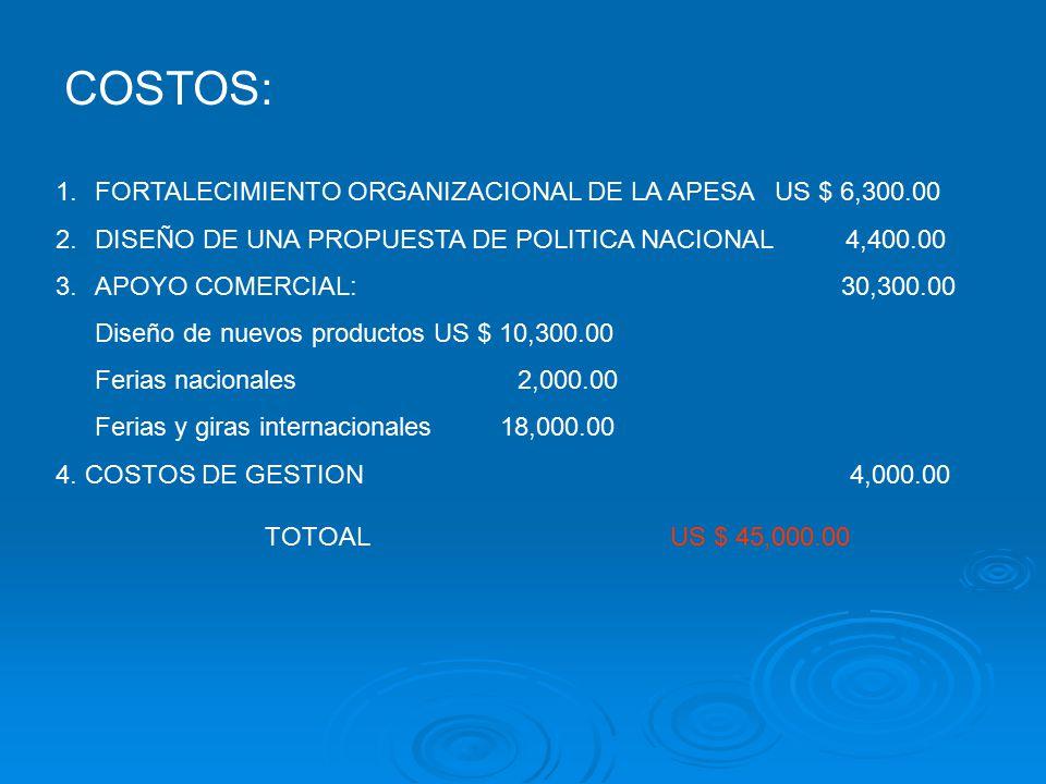COSTOS: FORTALECIMIENTO ORGANIZACIONAL DE LA APESA US $ 6,300.00