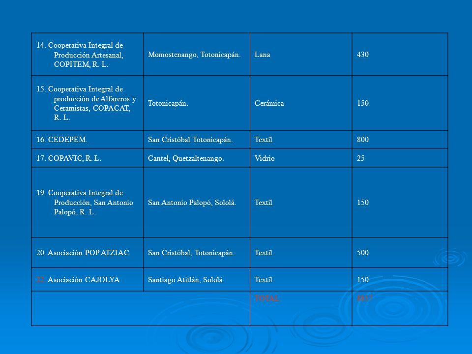 14. Cooperativa Integral de Producción Artesanal, COPITEM, R. L.