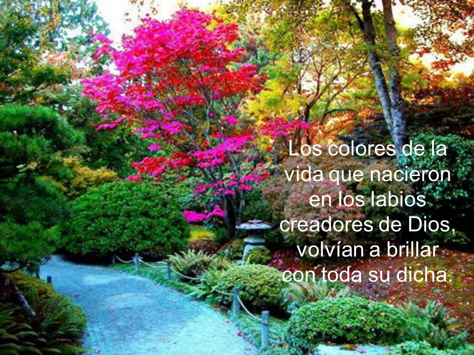 Los colores de la vida que nacieron en los labios creadores de Dios, volvían a brillar con toda su dicha.
