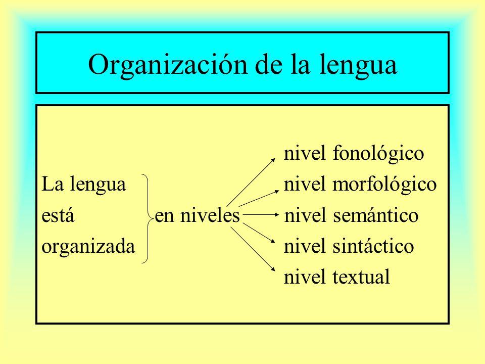 Organización de la lengua