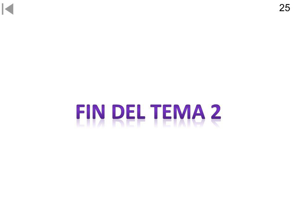 25 FIN DEL TEMA 2