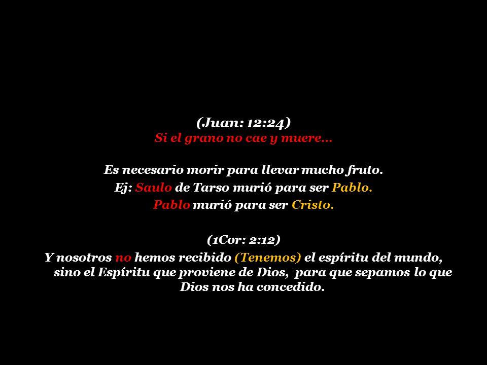 (Juan: 12:24) Si el grano no cae y muere…